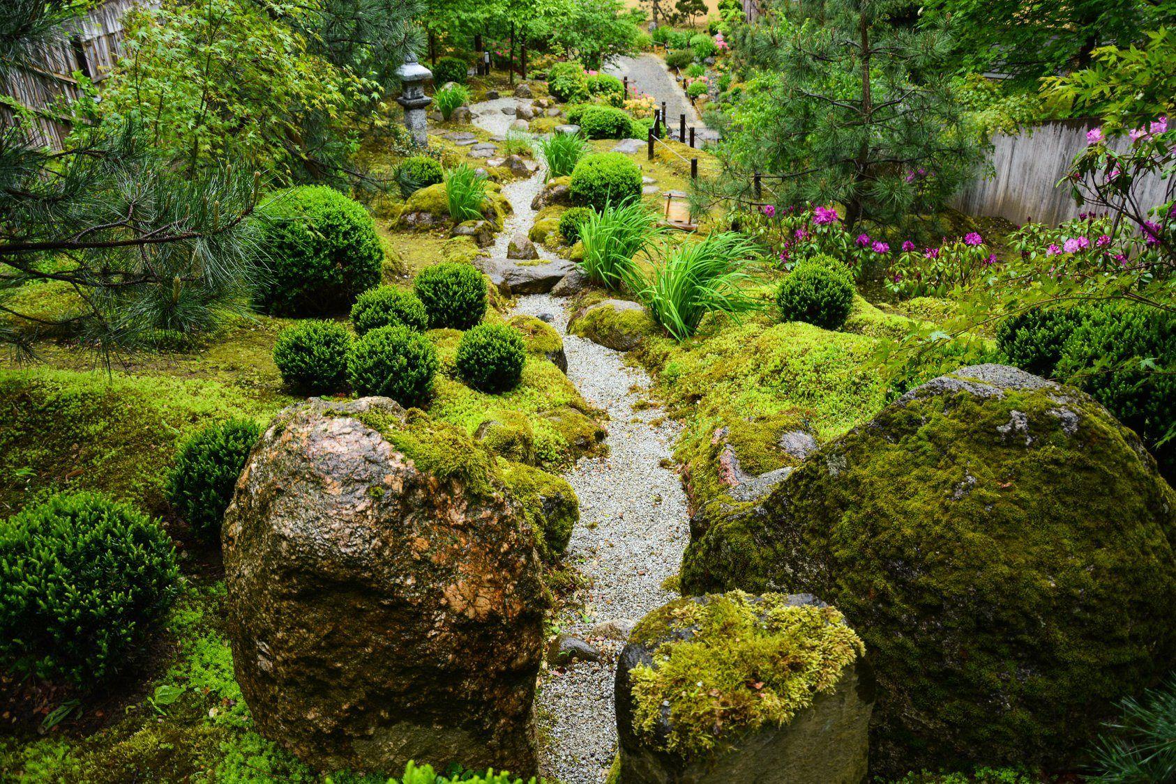 Japoniškas sodas SEI SHIN En