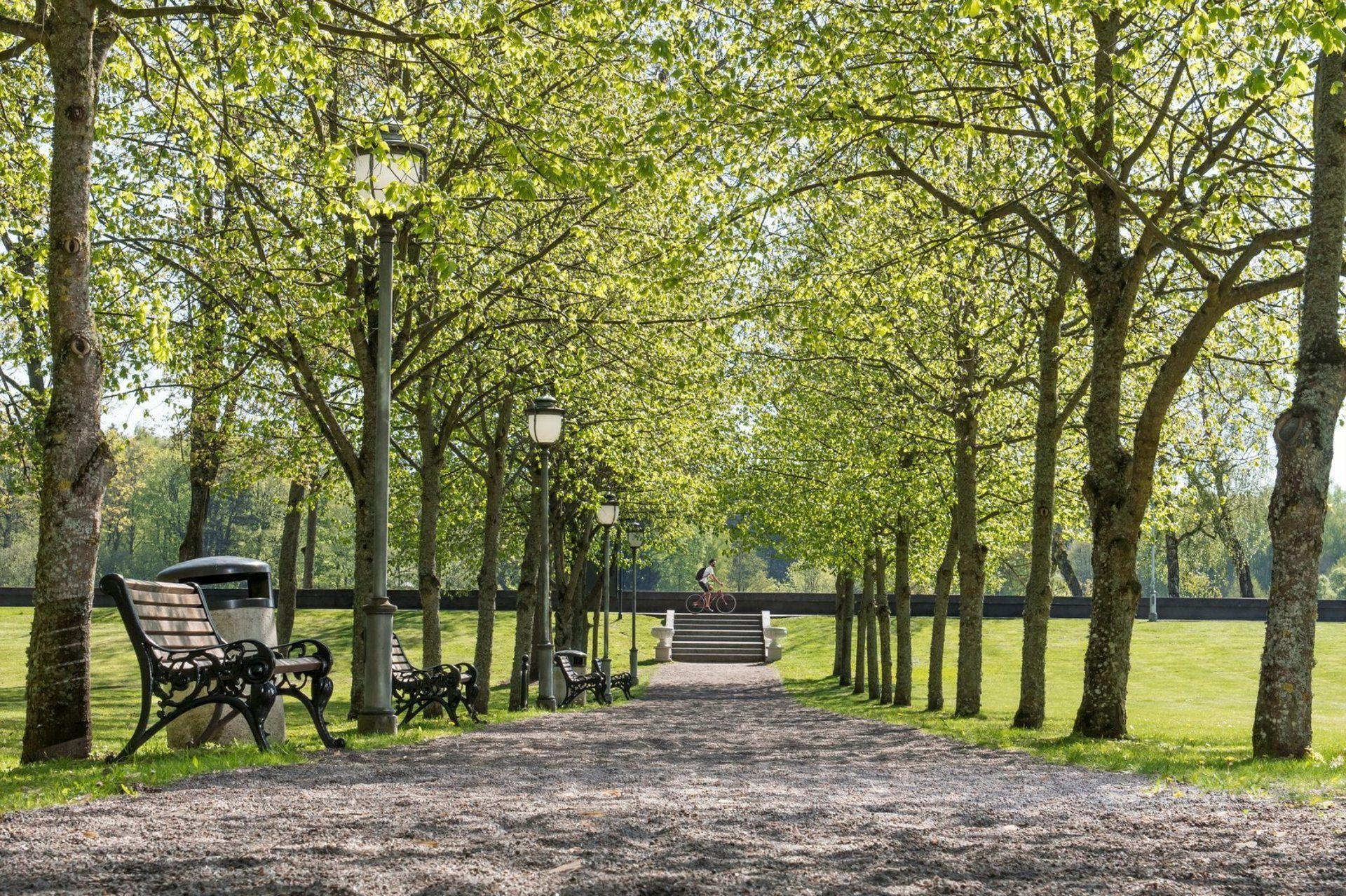 Birštono Vytauto parkas