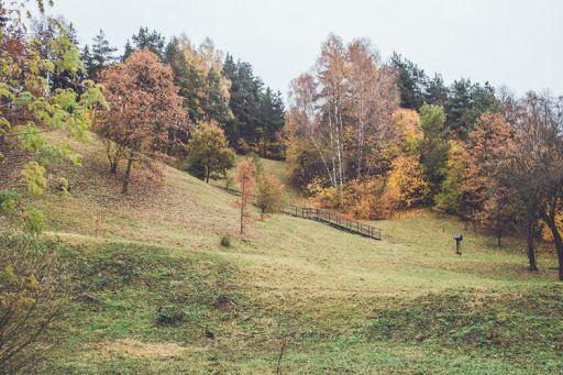 Kučkuriškių piliakalnis (Barsukynės kalnas)