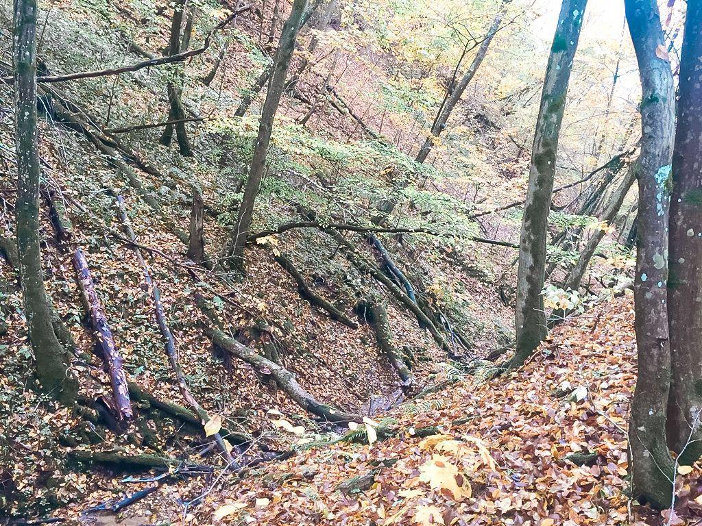 Jaučakių piliakalnis (Kartuvių kalnas)