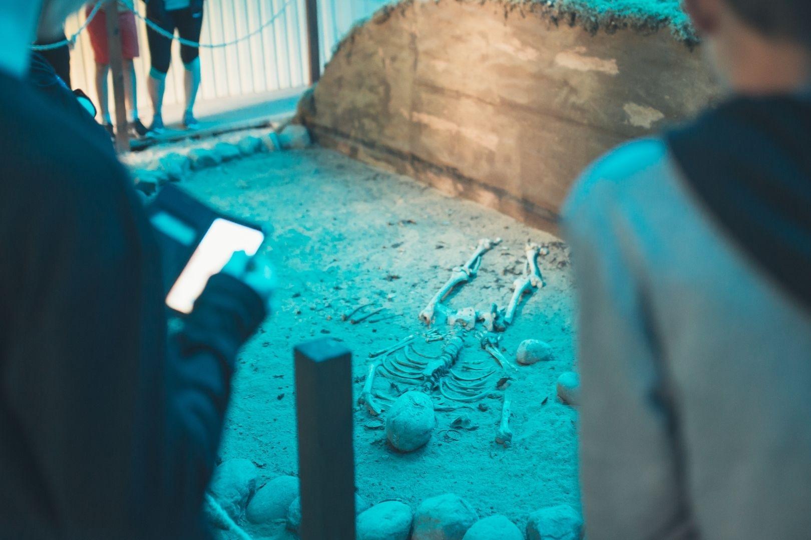 Pilkapio ekspozicija ir akmens amžiaus būstas Palūšėje