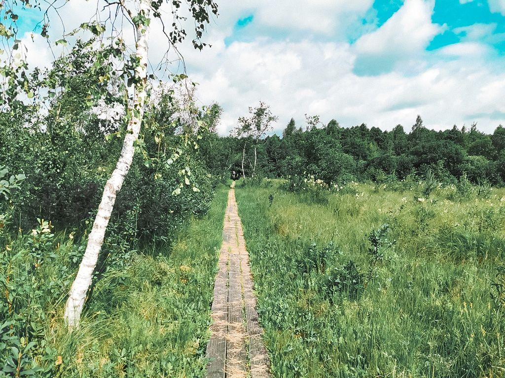 Paršežerio pėsčiųjų pažintinis takas