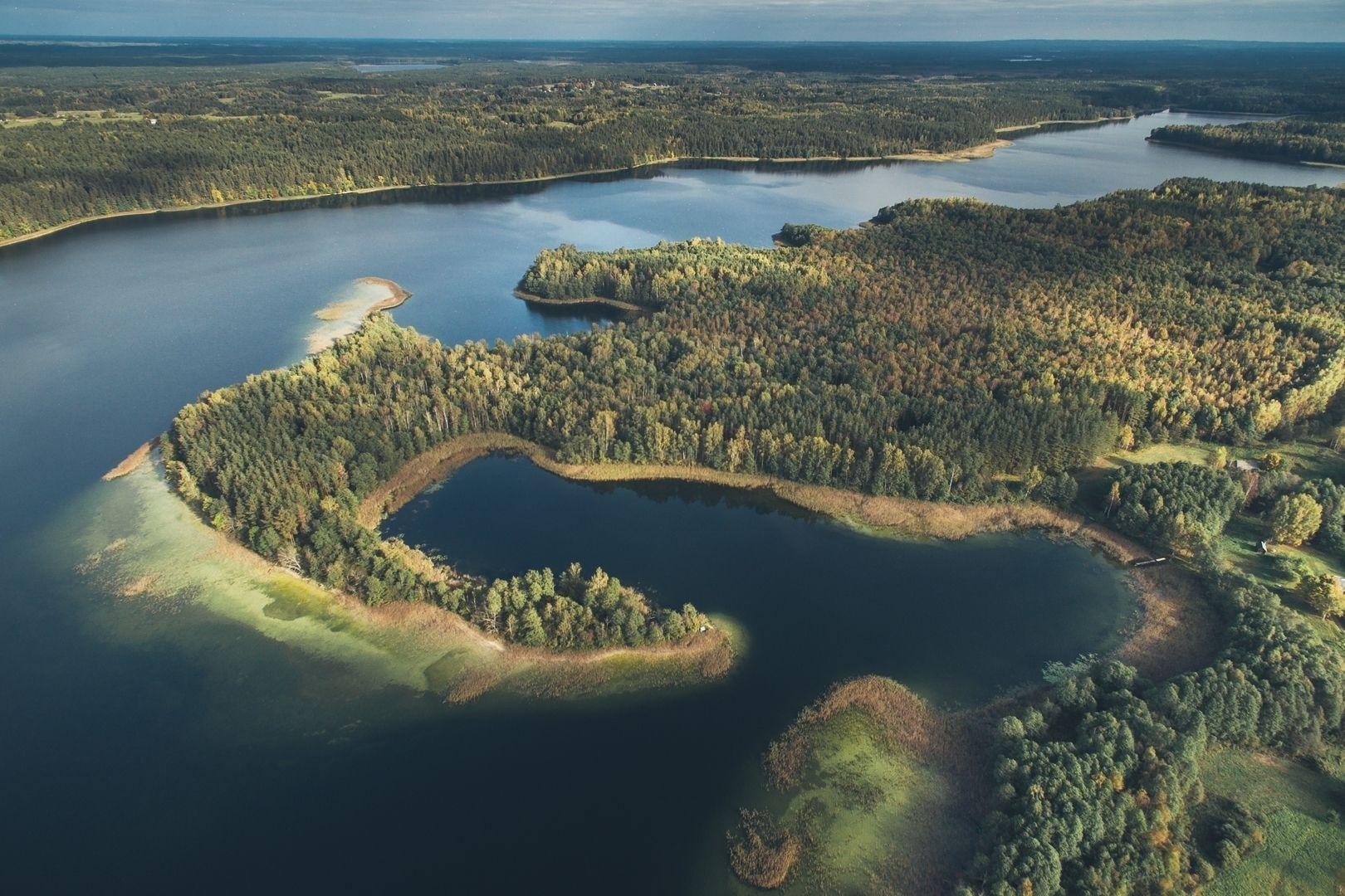 Tauragno ežero pakrantė